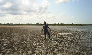 Потрясающие вещи: Лечебная грязь